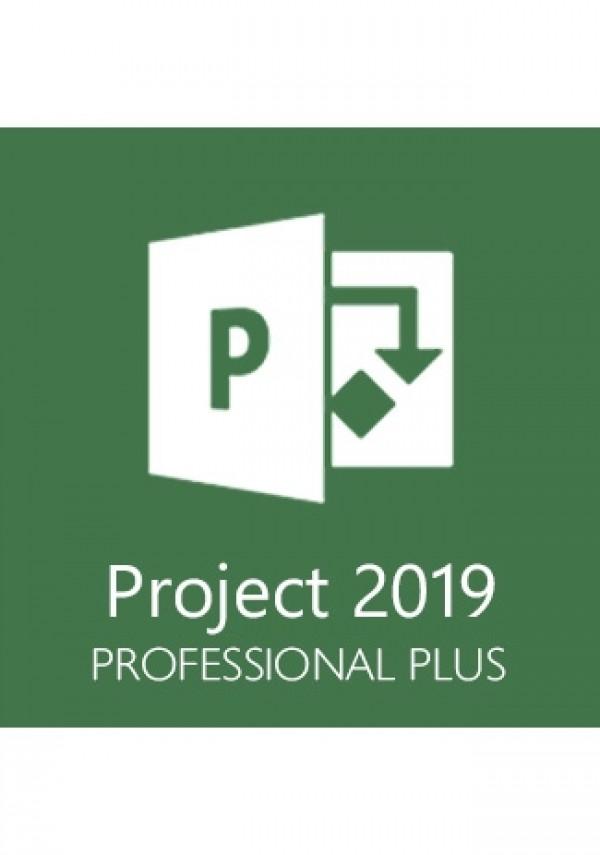 Microsoft Project Professional 2019 1 User